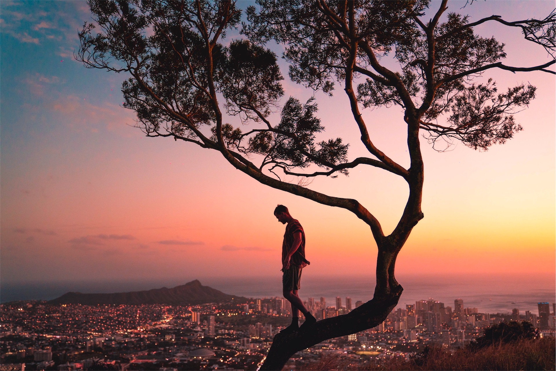 1920man-standing-on-tree-branch-during-sunset-3618162